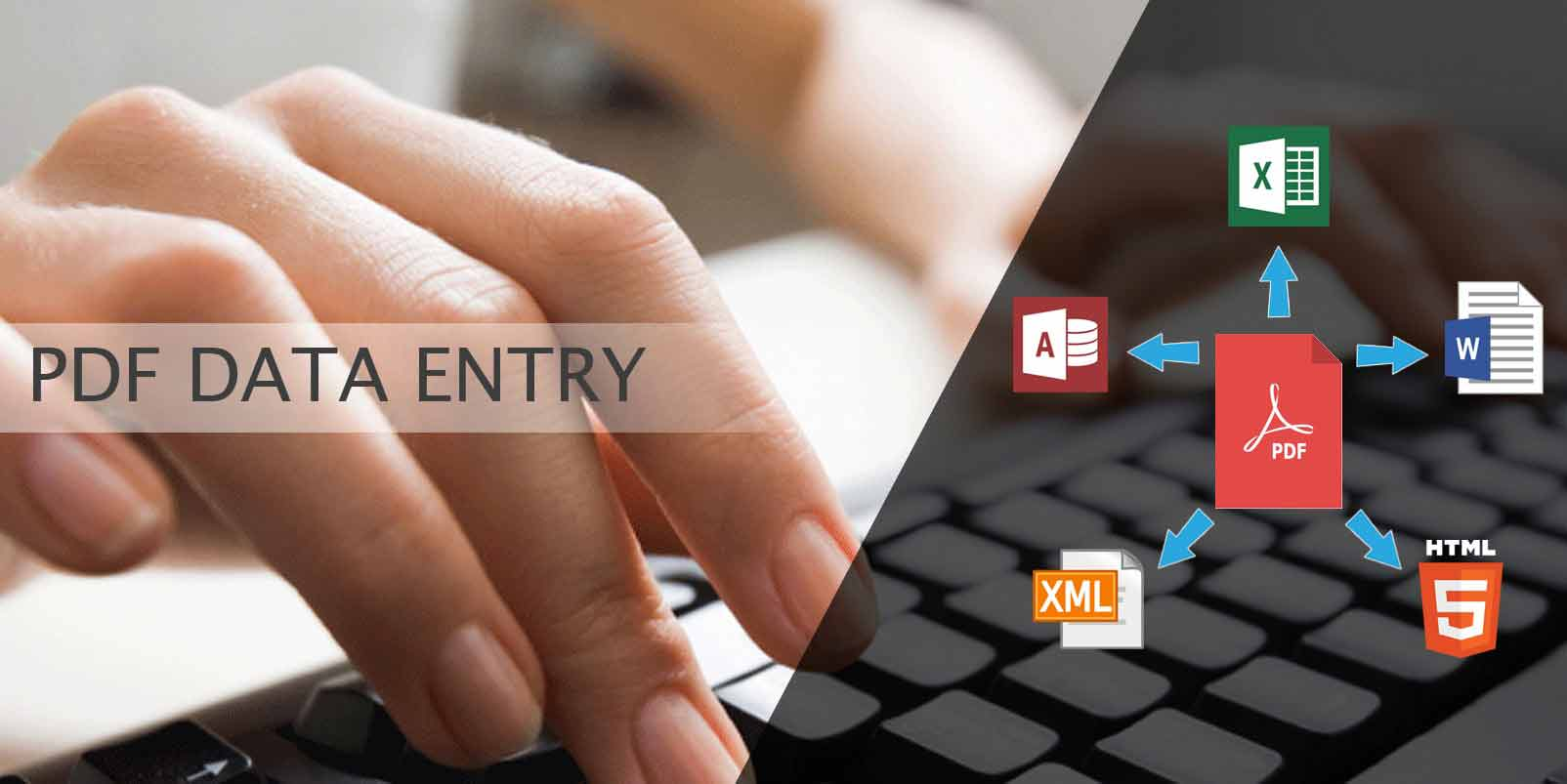 PDF-Data-Entry-Services